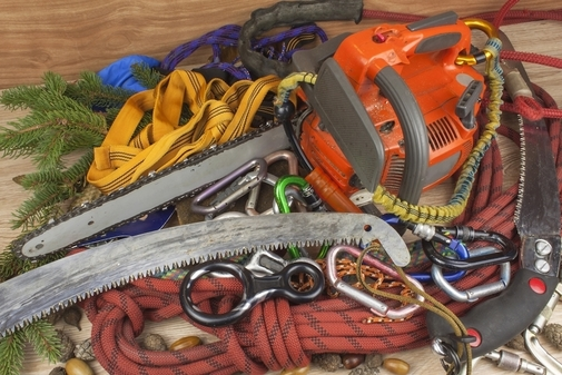 Picture of our tree care specialist climbing and cutting tools used in Aurora, IL